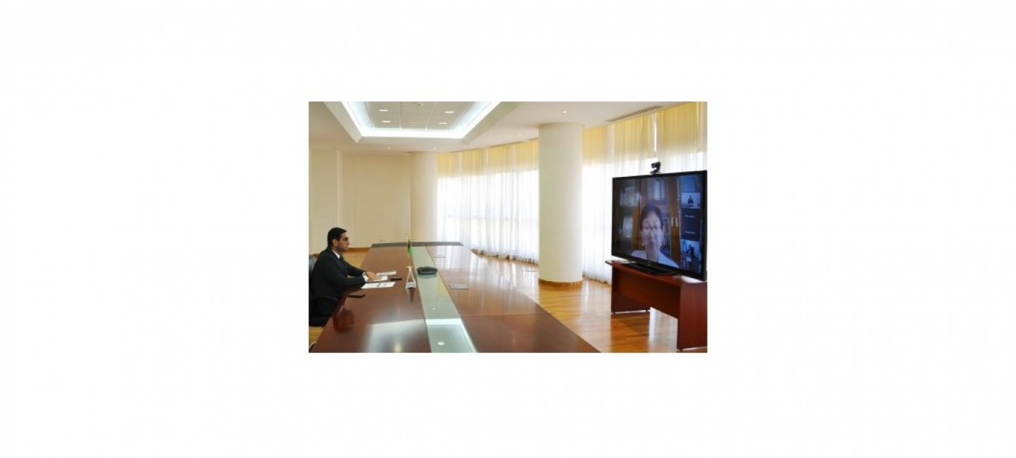 REPRESENTATIVES OF TURKMENISTAN PARTICIPATE IN AN ONLINE SEMINAR ON THE ISSUES OF ACCESSION TO THE WTO